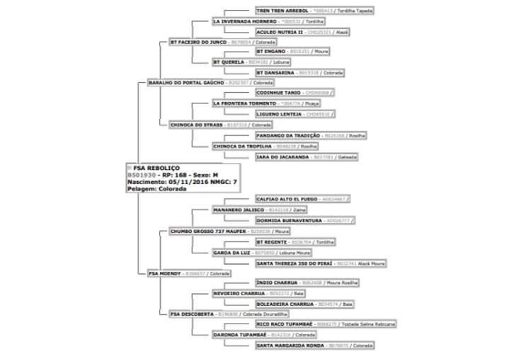 FAZENDA SANTO ANTÔNIO - FSA REBOLIÇO, FSA REGALO, FSA RECUERDO, SB B501930