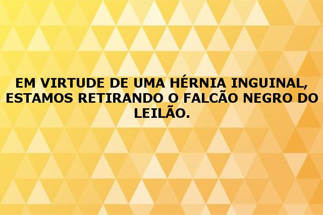 Cabanha Az de Ouros - AZ DE OUROS FALCÃO NEGRO, SB B331540
