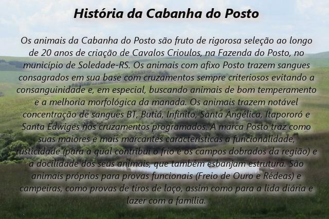 Remate digital de verão CAB. Do Posto - HISTÓRIA DA CAB DO POSTO, SB xxx