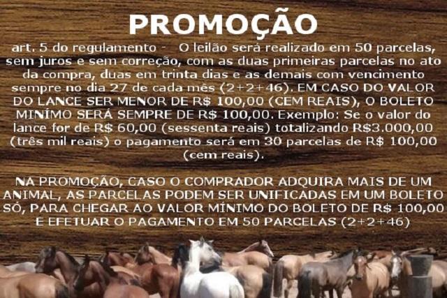 LEILÃO DIGITAL LIQUIDAÇÃO CAB VIRAÇÃO - PROMOÇÃO, SB XXX
